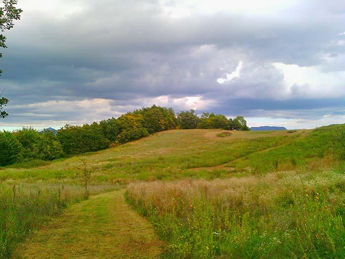 Ruta a peu pel camí dels bous